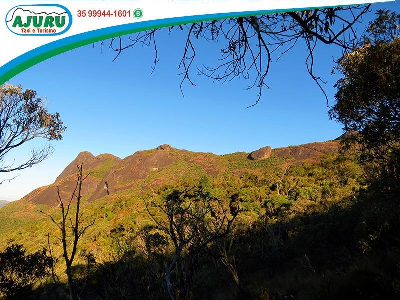 Pico do Papagaio - Aiuruoca-MG